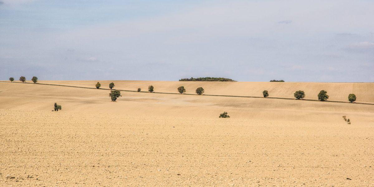 Landwirtschaft, Klimawandel